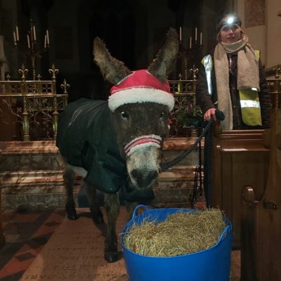 Clapham John (the Donkey Adopted By Patrons Of The Junction) Helping Out At The Church During Village Carol Singing.